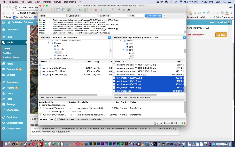 WordPress Metadata Workaround - CARL SEIBERT SOLUTIONS
