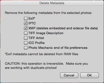 Delete Metadata dialog