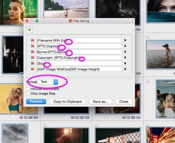 File Listing dialog