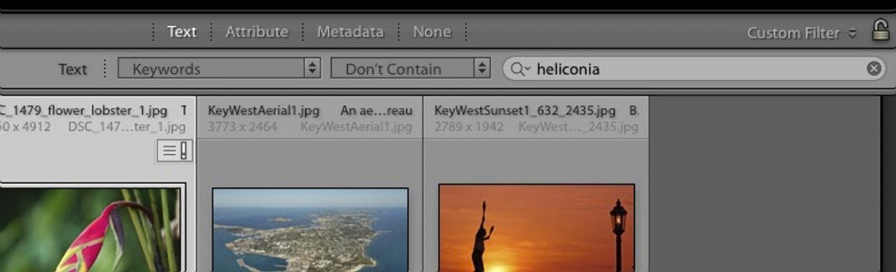 Lightroom can do a NOT search, but can't combine it into a useful function.