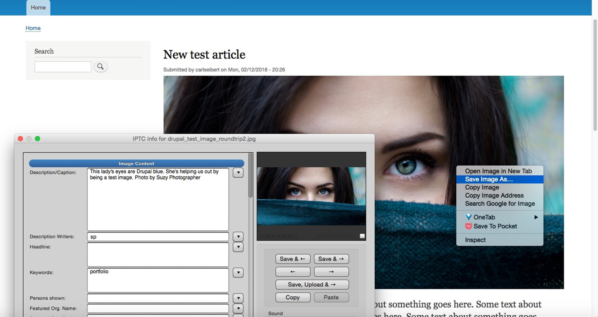 Screenshot of Drupal site with image