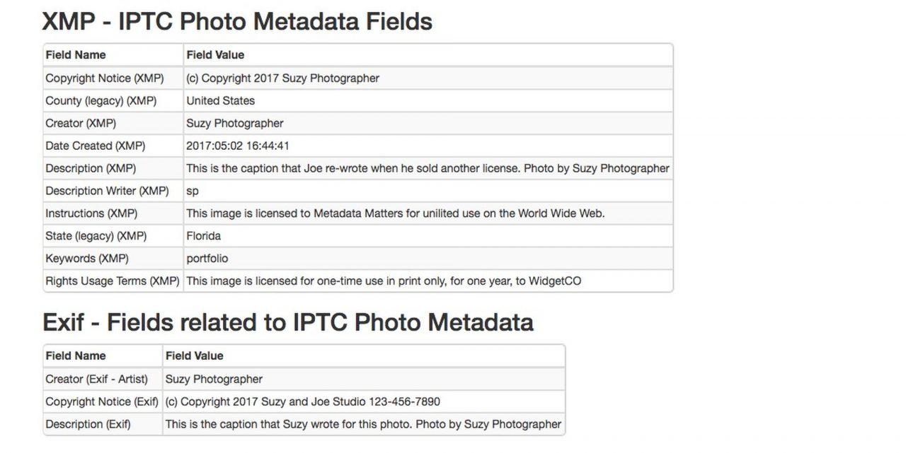 Metadata fields arranged by type