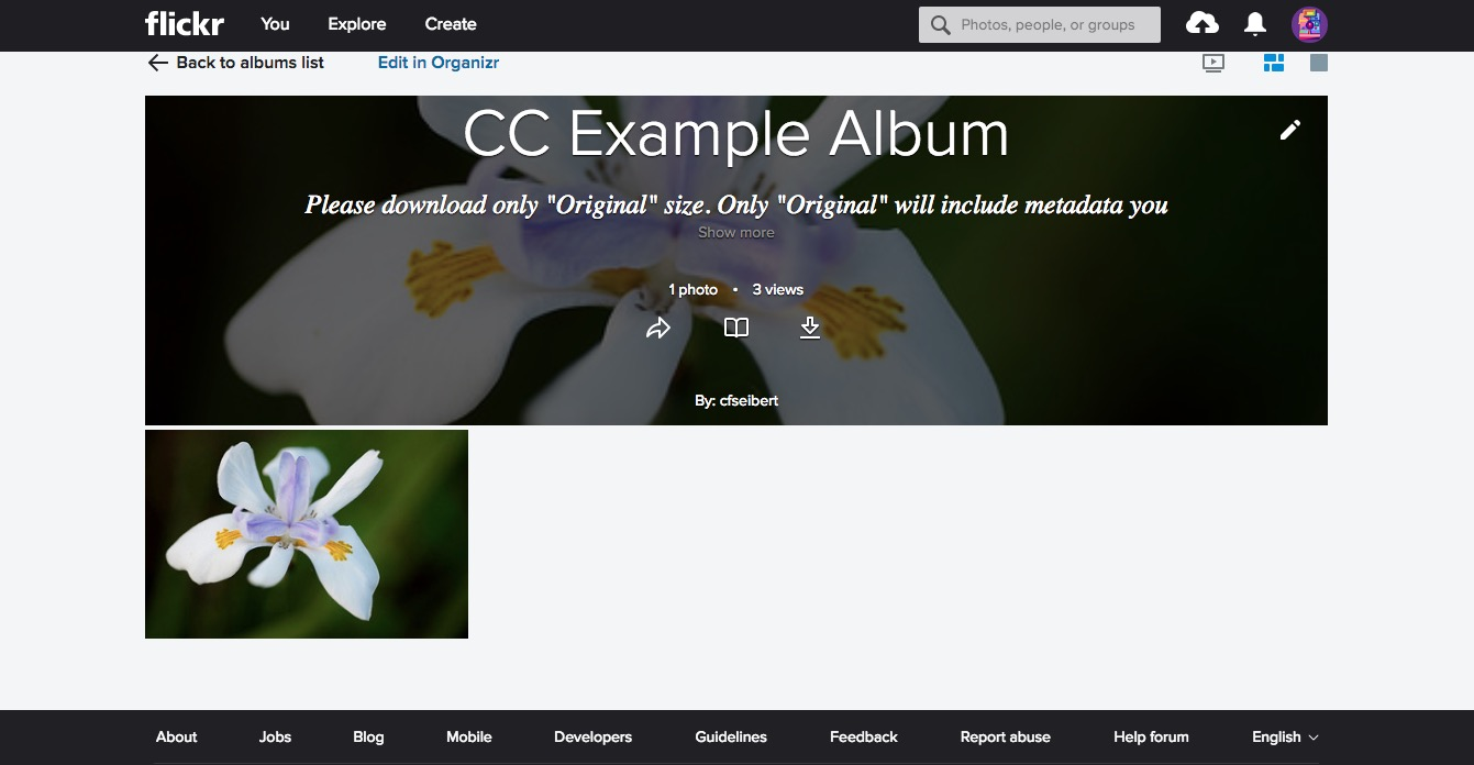 Creative Commons pictures on a Flickr album page