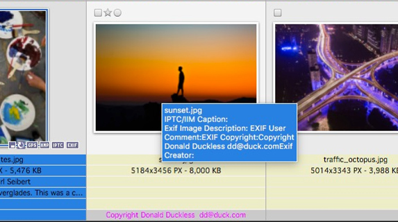 Out of sync Exif copyright management information