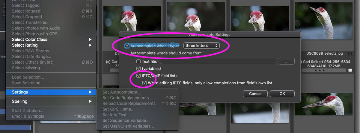 The Autocomplete settings dialog in Photo Mechanic